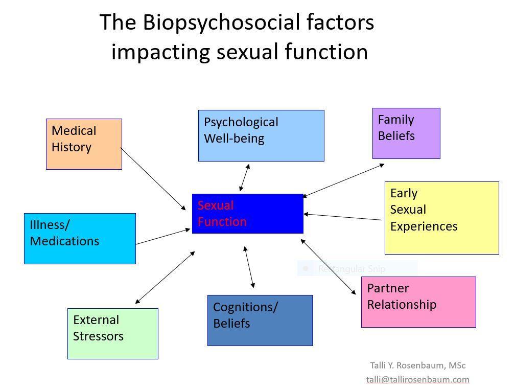 Biopsycholsocial factors impacting sexual function